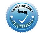 Seamless Gutters Today.com Platinum Gutter Professional